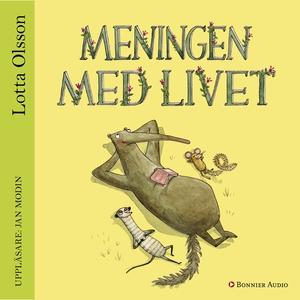 Meningen med livet (ljudbok) av Lotta Olsson