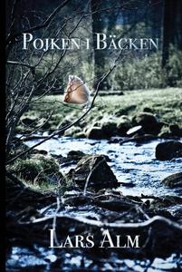 Pojken i bäcken (e-bok) av Lars Alm