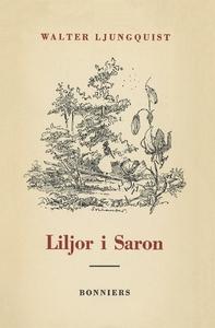 Liljor i Saron : (kanske inte en roman) (e-bok)