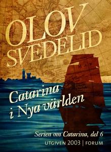 Catarina i Nya världen : En historisk roman (e-