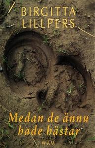 Medan de ännu hade hästar (e-bok) av Birgitta L