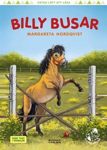 Billy busar (e-bok) av Margareta Nordqvist