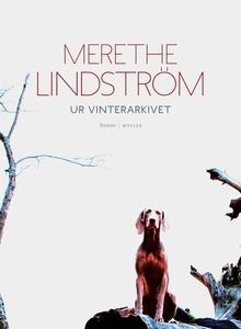 Ur vinterarkivet (e-bok) av Merethe Lindström