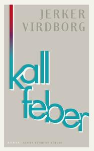 Kall feber (e-bok) av Jerker Virdborg