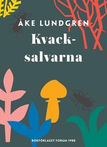 Kvacksalvarna (e-bok) av Åke Lundgren