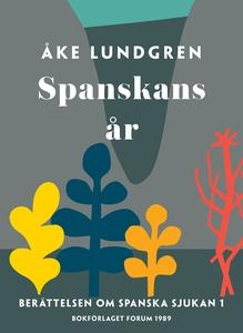Spanskans år (e-bok) av Åke Lundgren