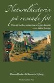 Naturalhistoria på resande fot : om att forska, undervisa och göra karriär i 1700-talets Sverige