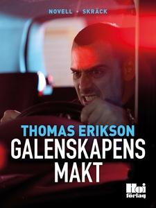 Galenskapens makt (e-bok) av Thomas Erikson