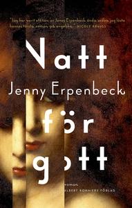 Natt för gott (e-bok) av Jenny Erpenbeck