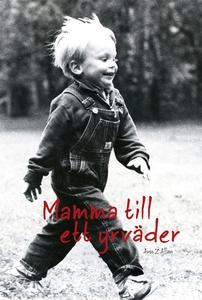 Mamma till ett yrväder (e-bok) av Ann Allan