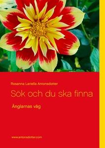 Sök och du ska finna: Änglarnas väg (e-bok) av
