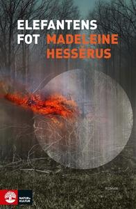 Elefantens fot (e-bok) av Madeleine Hessérus