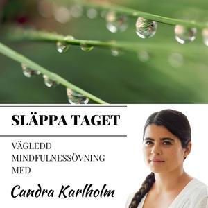 Mindfulness Släppa taget (ljudbok) av Candra Ka