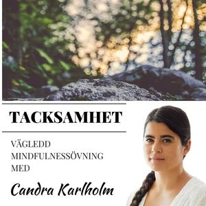 Mindfulness Tacksamhet (ljudbok) av Candra Karl