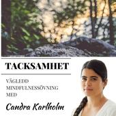 Mindfulness Tacksamhet