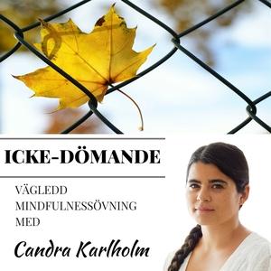 Mindfulness Icke Dömande (ljudbok) av Candra Ka