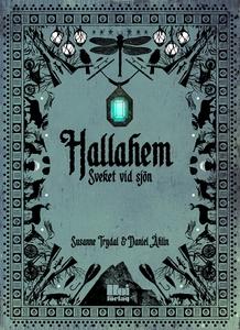Hallahem – Sveket vid sjön (e-bok) av Susanne T