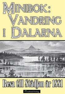 En vandring i Dalarnas fjäll år 1881 (e-bok) av