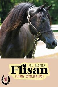 Flisan 1 - Flisans osynliga häst (e-bok) av Pia