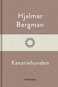 Kanariehunden (e-bok) av Hjalmar  Bergman