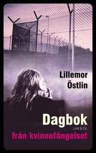 Dagbok från kvinnofängelset (ljudbok) av Lillem