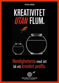 Kreativitet utan flum - Hemligheterna med att bli ett kreativt proffs