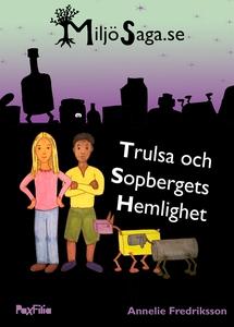 Trulsa och Sopbergets Hemlighet (e-bok) av Anne