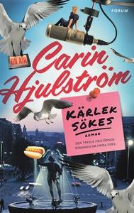 Kärlek sökes (e-bok) av Carin Hjulström