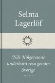 Nils Holgerssons underbara resa genom Sverige (Del ett)