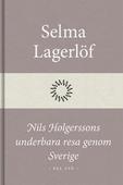 Nils Holgerssons underbara resa genom Sverige (Del två)