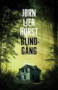 Blindgång (e-bok) av Jørn Lier Horst
