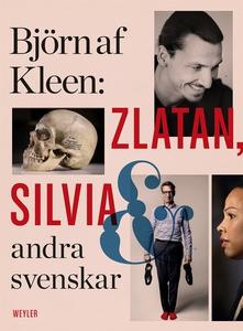 Zlatan, Silvia och andra svenskar (e-bok) av Bj