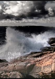 Dagbok från ditt försvinnande (e-bok) av Malin
