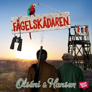 Fågelskådaren (ljudbok) av Micke Hansen, Christ