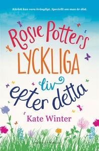 Rosie Potters lyckliga liv efter detta (e-bok)