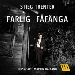 Farlig fåfänga (ljudbok) av Stieg Trenter