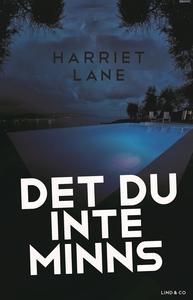 Det du inte minns (e-bok) av Harriet Lane