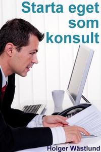 Starta eget som konsult (e-bok) av Holger Wästl
