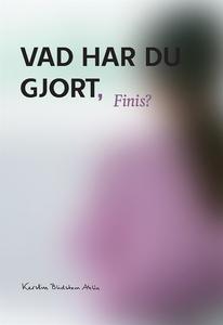 Vad har du gjort Finis? (e-bok) av Kerstin Blid