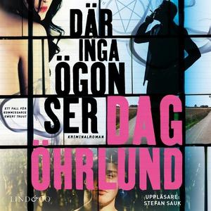 Där inga ögon ser (ljudbok) av Dag Öhrlund