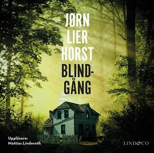 Blindgång (ljudbok) av Jørn Lier Horst, Jørn Li