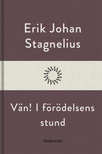 Vän! I förödelsens stund (e-bok) av Erik Johan
