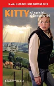 Kitty och mysteriet på Dimmornas hed (e-bok) av