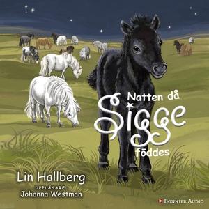 Natten då Sigge föddes (ljudbok) av Lin Hallber