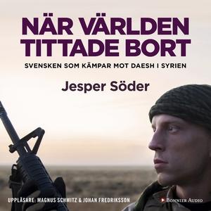 När världen tittade bort : Svensken som kämpar