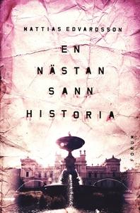 En nästan sann historia (e-bok) av Mattias Edva