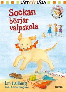 Sockan börjar valpskola (e-bok) av Lin Hallberg