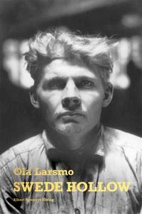 Swede Hollow (e-bok) av Ola Larsmo