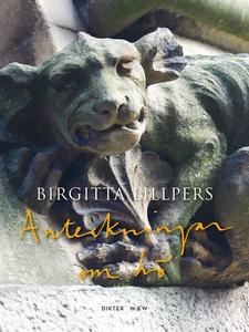 Anteckningar om hö (e-bok) av Birgitta Lillpers