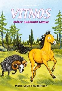 Vitnos 14 - Vitnos möter Gudmund Gumse (e-bok)